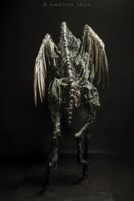 Pegaz | Pegasus